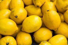 Bunch of lemons in boxes in a market in Provence. Stock Images