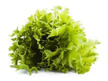 Bunch of lettuce Stock Photo