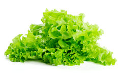 Bunch of lettuce Stock Photos