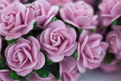 Bunch of light magenta roses for background Royalty Free Stock Image