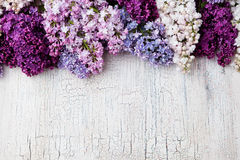 Bunch of lilac flowers on a crackling wooden background Top view copy space Royalty Free Stock Photo