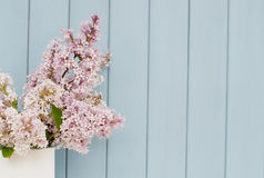 Bunch of lilac Royalty Free Stock Photos