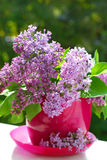 Bunch of lilac in the vase Royalty Free Stock Photos