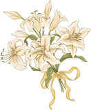 Bunch of lilies Royalty Free Stock Images