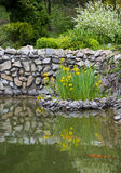 Bunch of lilies in middle of lake and stones Royalty Free Stock Photos