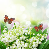Bunch of Lilly of valley. Close up in garden with butterflies Stock Photo