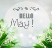 Lilly of valley. Bunch of Lilly of valley flowers over gray bokeh background with hello may greetings Stock Photos