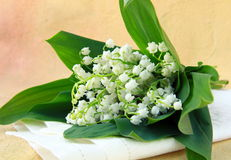 Bunch of lily of the valley Stock Photo