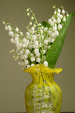 Bunch of lily of the valley Stock Photography