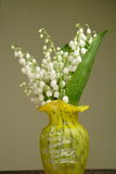 Bunch of lily of the valley Royalty Free Stock Photo
