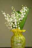 Bunch of lily of the valley Stock Images