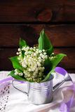 Bunch of lily of the valley Royalty Free Stock Photos