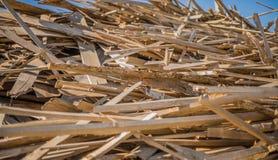 A bunch of long wood cutting.  Stock Photos