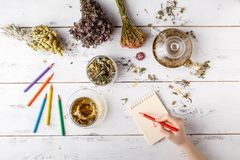 Bunch of medicinal herbs, cup of healthy tea and bag of dry healthy coneflowers on wooden board. Herbal medicine. Royalty Free Stock Photo