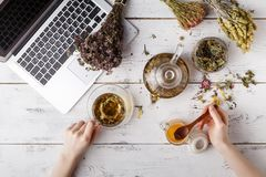 Bunch of medicinal herbs, cup of healthy tea and bag of dry healthy coneflowers on wooden board. Herbal medicine. royalty free stock image