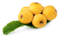 Bunch of medlars Royalty Free Stock Image