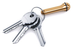 Bunch of metal keys with keychain  on white background Royalty Free Stock Images