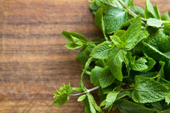 Bunch of mint. Bunch of fresh green mint royalty free stock image