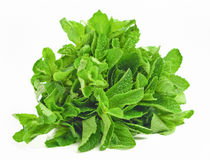 Bunch of mint leaves isolated Stock Photo