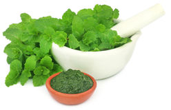 Bunch of mint leaves in a mortar with ground paste Royalty Free Stock Images