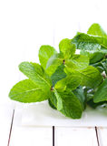 Bunch of mint leaves, Stock Photos
