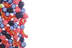 Bunch of mixed berries in harvest pile on white background. Colorful composition with fresh organic strawberry, blueberry, blackbe. Rry & redcurrant. Clean Royalty Free Stock Photos