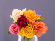 Bunch of multicolored roses Royalty Free Stock Photography