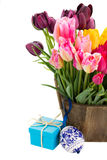 Bunch of multicolored tulips flowers Stock Images