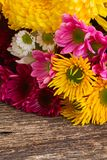 Bunch of mum flowers Stock Photography