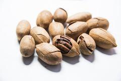 A bunch of nutritious Bigen nuts stock image
