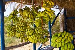 Free Bunch Of Bananas Royalty Free Stock Photos - 26520528