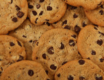 Bunch Of Chocolate Chip Cookies Stock Photography