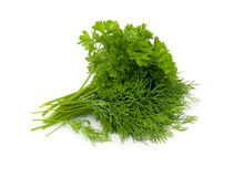 Free Bunch Of Dill And Parsley Royalty Free Stock Images - 32268589