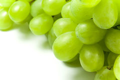 Free Bunch Of Green Grapes Stock Photography - 5948142