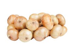 Free Bunch Of Onions Isolated On White Background Royalty Free Stock Photography - 45838037