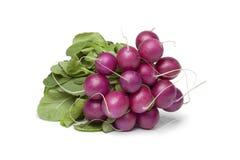 Free Bunch Of Purple Radish Royalty Free Stock Photography - 30747367