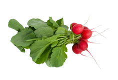 Bunch Of Red Radish With Leaves Stock Photos