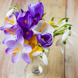 Bunch Of Spring Flowers. Crocus And Snowdrops On The Wooden Back Stock Photos