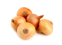 A bunch of onions Royalty Free Stock Photos