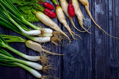 Bunch of onions and radishes. Bunch of fresh green onions and red white radishes on wooden table background Stock Image