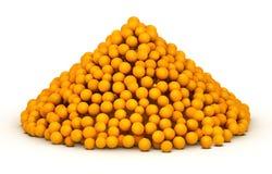 Bunch of orange citrus Royalty Free Stock Photo