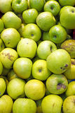Bunch of organic apples Stock Photography