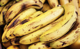 Bunch of organic bananas at market stall Royalty Free Stock Images