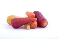 Bunch of organic carrots. Royalty Free Stock Photos