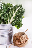 Bunch of organic silverbeet on a metal bucket Stock Images