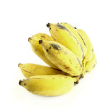 Bunch of over ripe bananas Royalty Free Stock Images