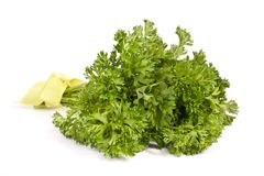 Bunch of parsley Stock Photo