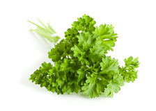 Bunch of parsley Royalty Free Stock Image