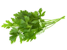 Bunch of parsley. Isolated on white Royalty Free Stock Images