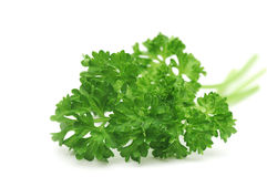 Bunch of parsley Stock Image